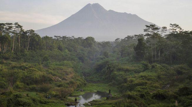 Monyet-monyet Penghuni Gunung Merapi Kirim Tanda Alam